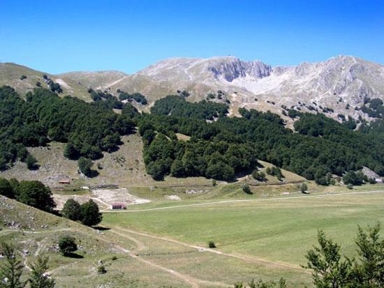 Il monte Miletto dal bosco di pietra